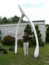 Giant Wishbone