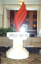 New logo for Epilepsy Foundation
